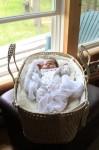 Sophia naps in her Moses basket